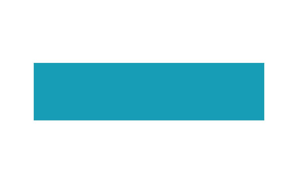 DKJS Logo